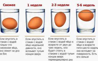 Как проверить свежие ли яйца куриные сырые