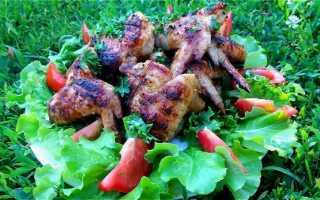 Крылья куриные рецепты на костре маринад