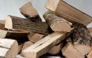 Какие дрова лучше для шашлыка