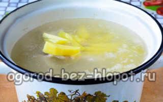 Как приготовить борщ с квашеной капустой