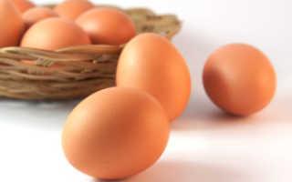 Сколько можно хранить куриные яйца без холодильника