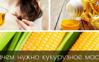 Польза и вред кукурузного масла состав