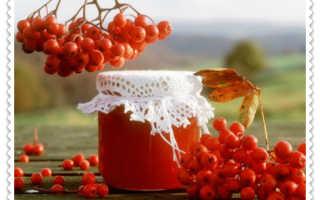 Варенье без сахара из красной рябины