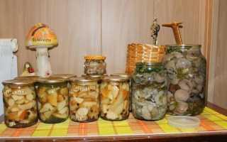 Засолить грибы рецепт