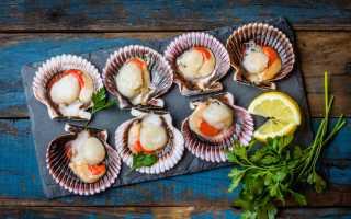 Как приготовить морской гребешок в ракушке