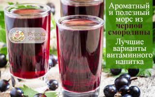 Морс освежающий из ягод черной смородины