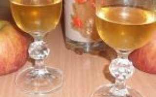 Видео рецепт приготовления сидра из сока