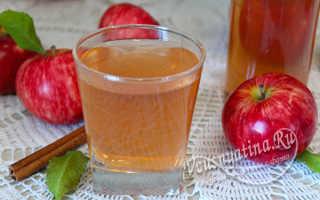 Яблочный сок с корицей и гвоздикой на зиму в соковарке