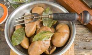 Салат с почками свиными