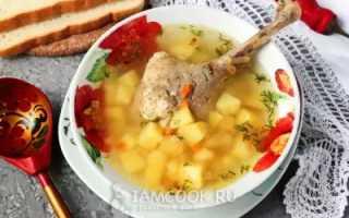 Как приготовить суп из гуся