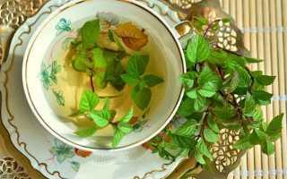 Мятный чай с лимоном польза и вред